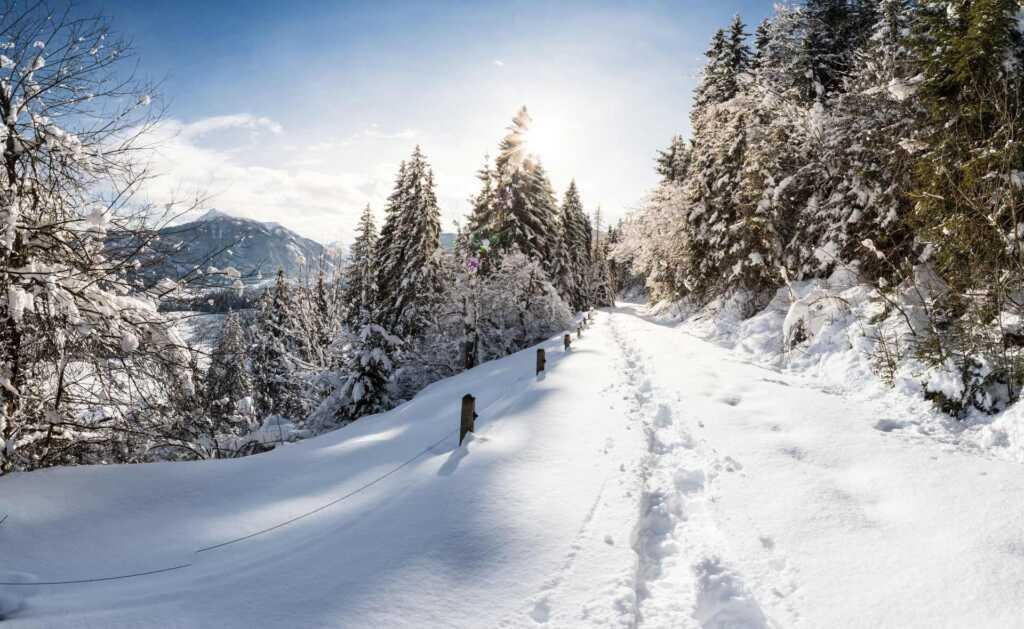 Winterwanderweg in Flachau